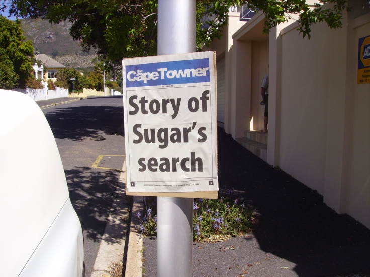 Story of Sugar's Search