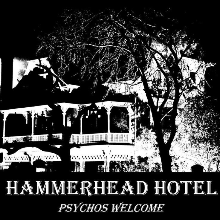 Hammerhead Hotel | photo: Michael Currin